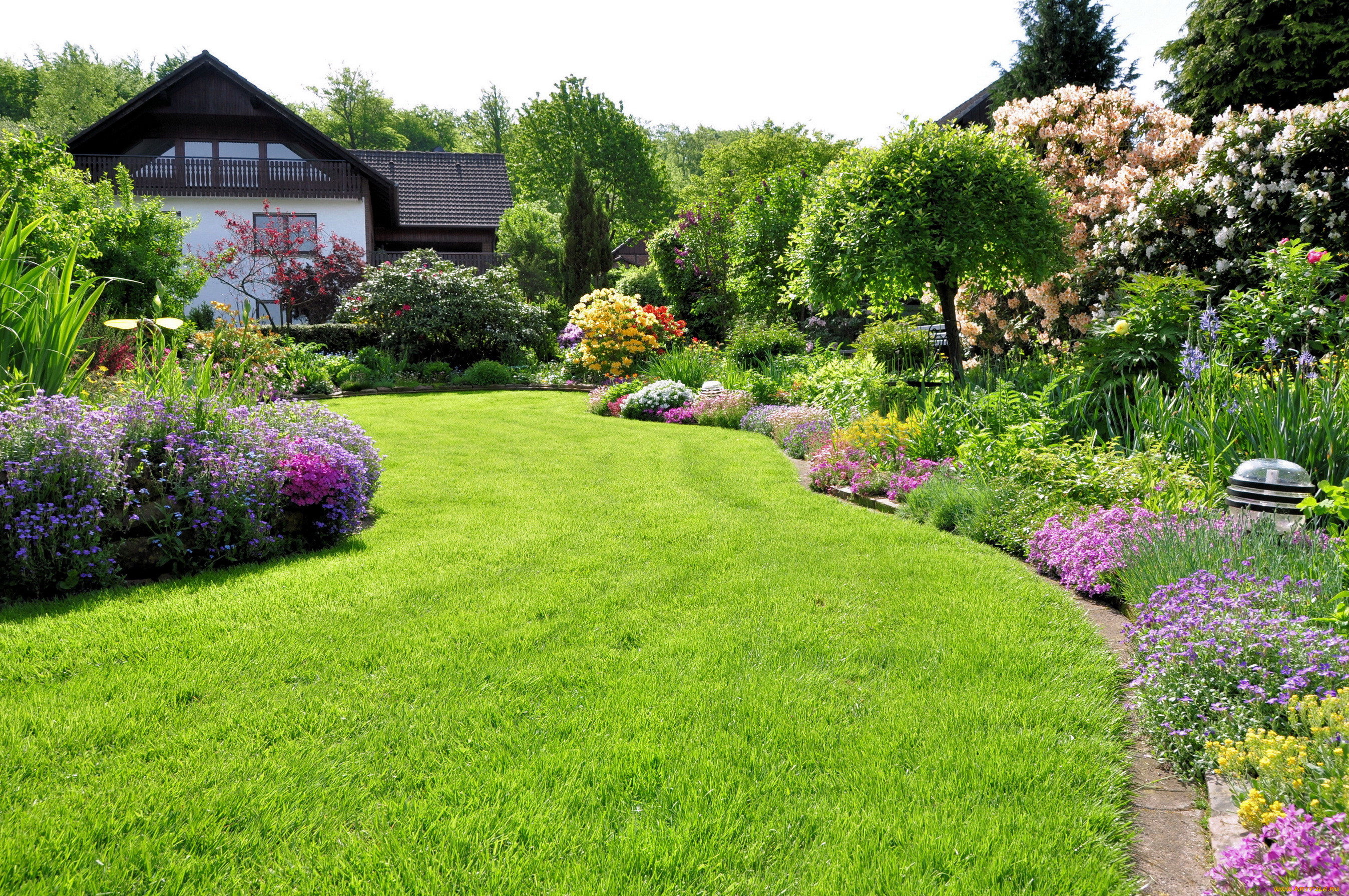 цветочный газон в картинках выбор аппаратов